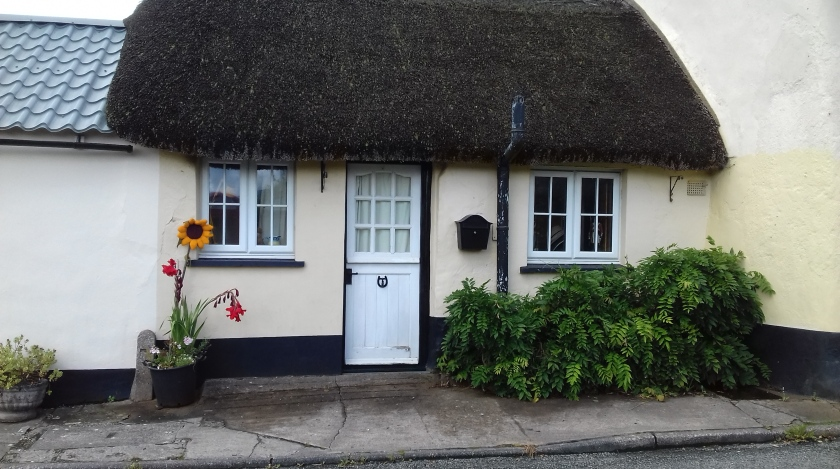 Cottage white door with thatched roof #sheepwash