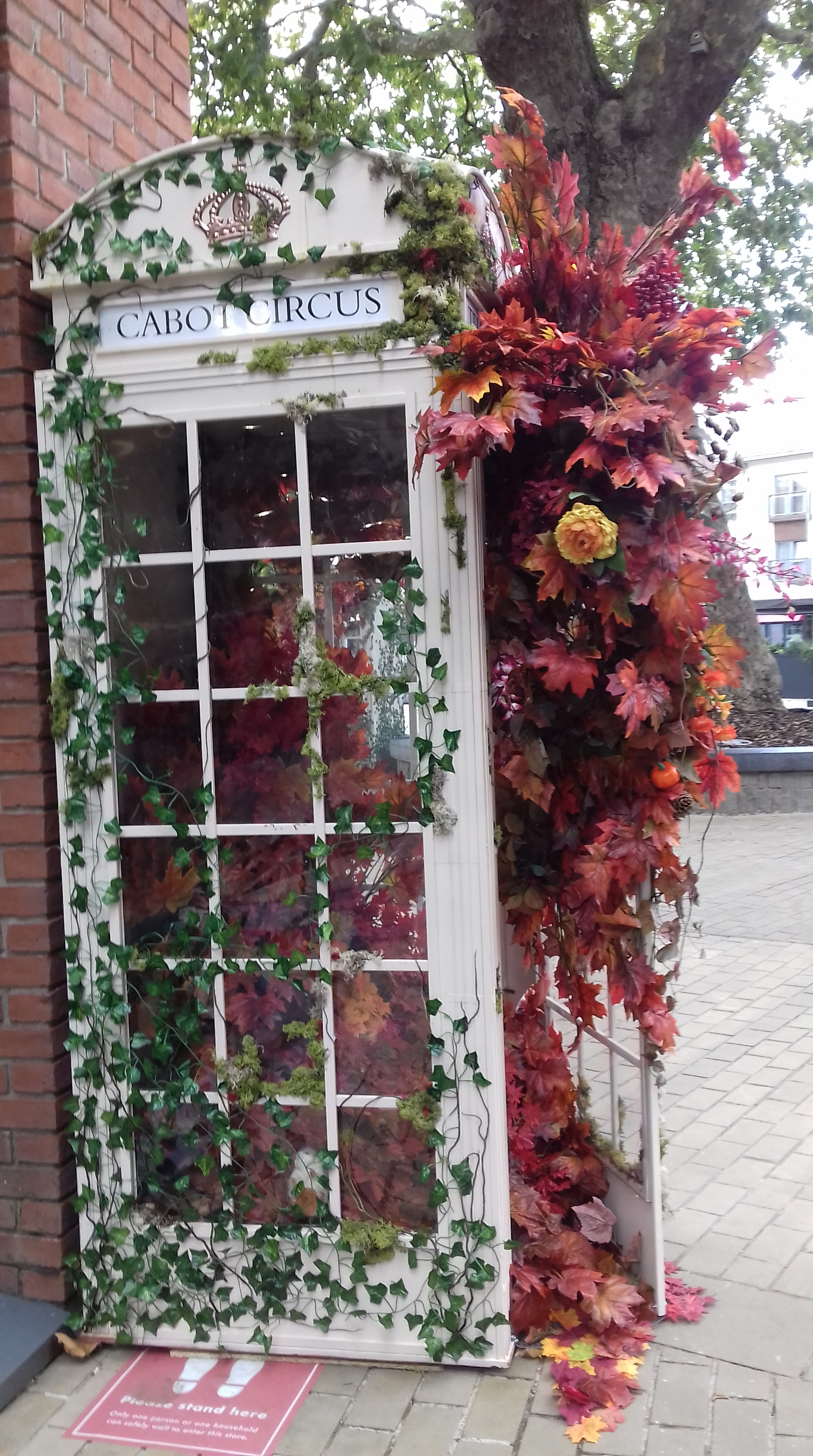 A phone box filled with autumn leaves in Cabot Circus