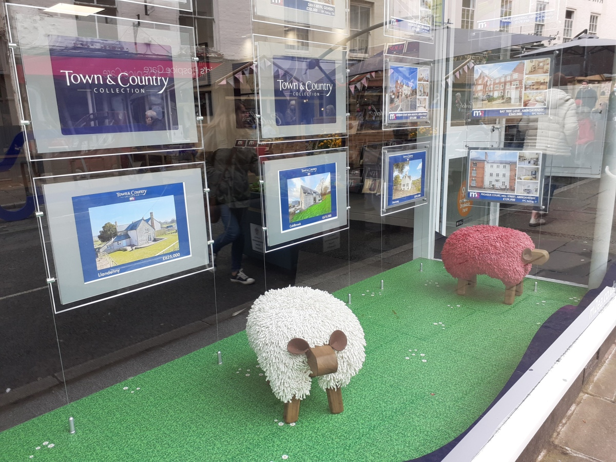 Sheep grazing on a field in an estate agent's window